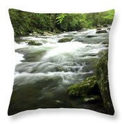 Little River 3 Throw Pillow