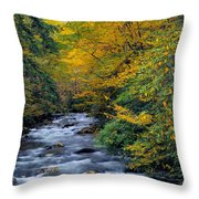 Little River Throw Pillow