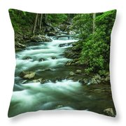 Little River Tremont Area Of Smoky Mountains National Park Throw Pillow