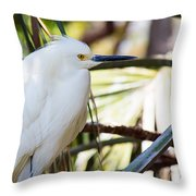 Little Snowy Egret Throw Pillow