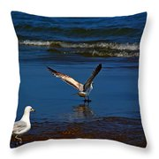 Little Splash Throw Pillow