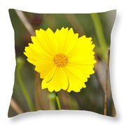 Little Sun Throw Pillow