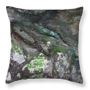 Little Trickle Throw Pillow