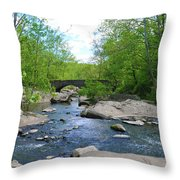 Little Unami Creek - Pennsylvania Throw Pillow