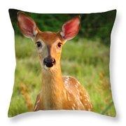 Little Warrior Throw Pillow by Lori Frisch