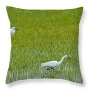 Little White Egret Throw Pillow