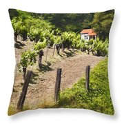 Little White House Throw Pillow