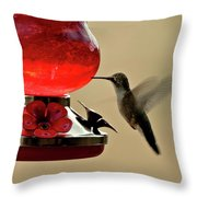 Little Winged Wonder Throw Pillow