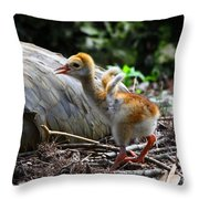 Little Wings Throw Pillow