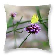 Little Yellow Butterfly On Verbena Throw Pillow
