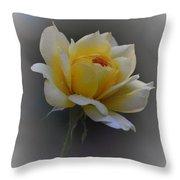 Little Yellow Rose Throw Pillow