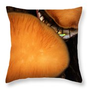 Live Abalone Throw Pillow