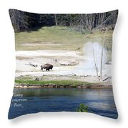 Live Dream Own Yellowstone Park Bison Text Throw Pillow
