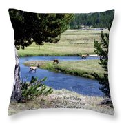 Live Dream Own Yellowstone Park Elk Herd Text Throw Pillow