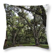 Live Oak And Spanis Moss Landscape Throw Pillow
