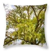 Live Oak And Spanish Moss 2 - Paint Throw Pillow