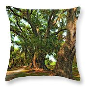 Live Oak Lane Throw Pillow by Steve Harrington