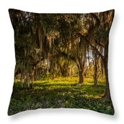 Live Oak Tree Throw Pillow
