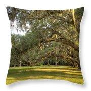 Live Oak Trees Sunrise Throw Pillow