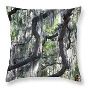 Live Oak With Spanish Moss And Palms Throw Pillow