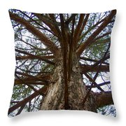 Live Spokes Throw Pillow