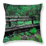 Lively Color Throw Pillow