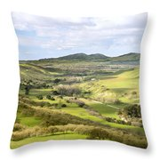 Livermore Valley Throw Pillow
