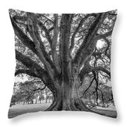 Living History Bw Throw Pillow