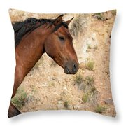 Living History Throw Pillow