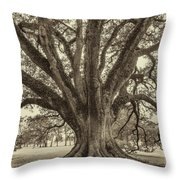 Living History Sepia Throw Pillow