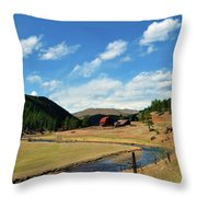 Living In The Valley Throw Pillow by Angelina Vick