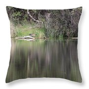 Living On The Pond Throw Pillow