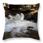 Living Streams Throw Pillow