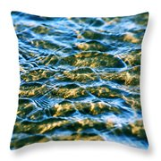 Living Structures-2 Throw Pillow