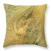 Living Structures-4 Throw Pillow