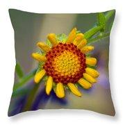 Living Sunshine Throw Pillow