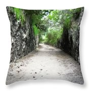 Living Walls Throw Pillow