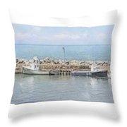 Livingstone Cove Throw Pillow