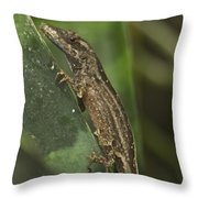 Lizard 3 Throw Pillow