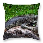 Lizard At The Zoo Throw Pillow