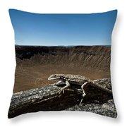 Lizard Crater Throw Pillow