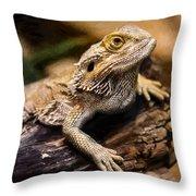 Lizard - Id 16217-202733-1873 Throw Pillow