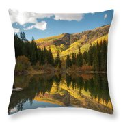 Lizard Lake Throw Pillow