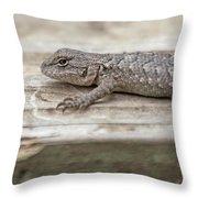 Lizard On Deck Throw Pillow