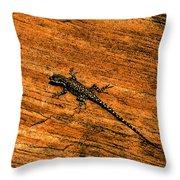 Lizard On Sandstone Throw Pillow