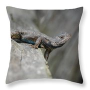 Lizard On Wood Fence Shiloh Tennessee 031620161698 Throw Pillow