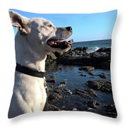Lizzy's Sunset Throw Pillow