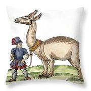 Llama, 1607 Throw Pillow