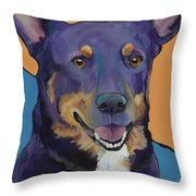 Llano Throw Pillow