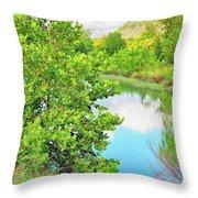 Llano River Scenic Throw Pillow